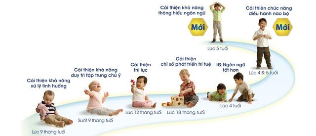 Sự phát triển trí não của trẻ qua các giai đoạn